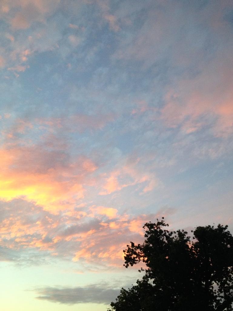 Grafton Sky 3