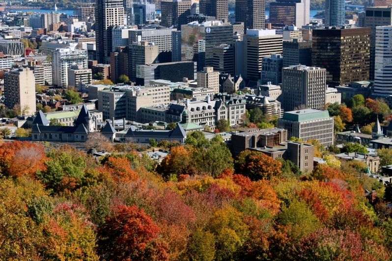View from Mont-Royal