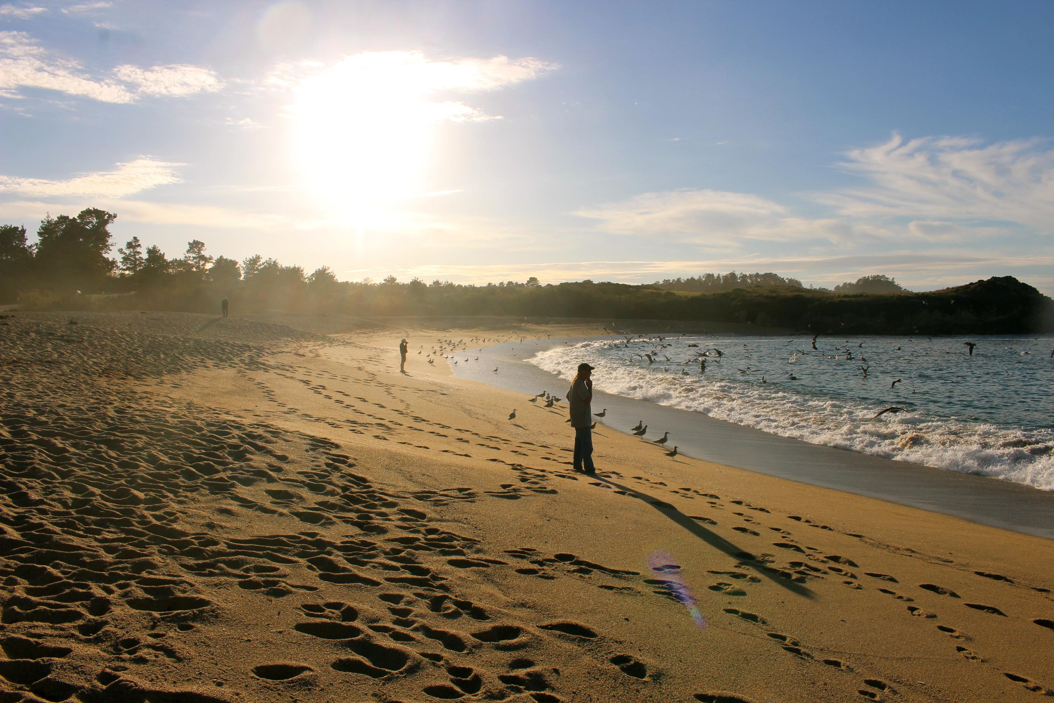 Big Sur Coastline Sunset - Partington Cove